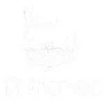 MS-FRANCE-logo-docshipper